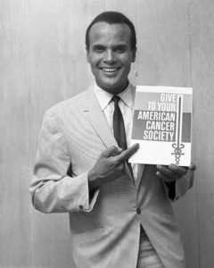 Harry Belafonte1966© 1978 Barry Kramer - Image 24354_0006