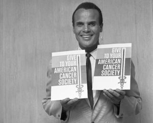 Harry Belafonte1966© 1978 Barry Kramer - Image 24354_0225