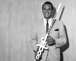 Harry Belafonte1966© 1978 Barry Kramer - Image 24354_0226