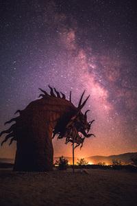 Anza Borrego, California2016© 2016 Jason Mageau - Image 24361_0042