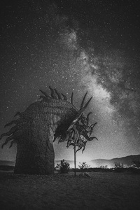 Anza Borrego, California2016© 2016 Jason Mageau - Image 24361_0043