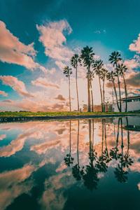 Cabrillo Beach, San Pedro, Los Angeles, California2017 © 2017 Jason Mageau - Image 24361_0073
