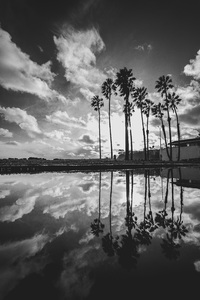 Cabrillo Beach, San Pedro, Los Angeles, California2017© 2017 Jason Mageau - Image 24361_0074