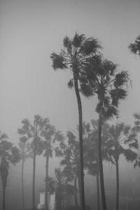 Cabrillo Beach, San Pedro, Los Angeles, California2017© 2017 Jason Mageau - Image 24361_0088