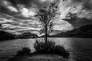 Lake Havasu, California2016© 2016 Jason Mageau - Image 24361_0179