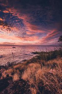 Maui, Hawaii2016© 2016 Jason Mageau - Image 24361_0198
