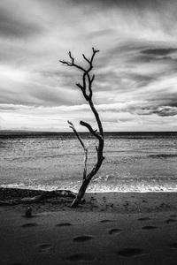 Maui, Hawaii2016© 2016 Jason Mageau - Image 24361_0203