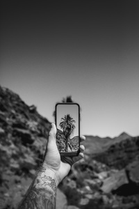 Palm Springs, California2017© 2017 Jason Mageau - Image 24361_0217