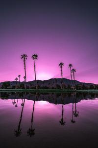 Palm Springs, California2016 © 2016 Jason Mageau - Image 24361_0219