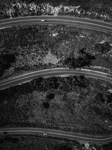 Palos Verdes Drive East, California2017© 2017 Jason Mageau - Image 24361_0259