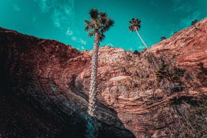 San Pedro, California2017© 2017 Jason Mageau - Image 24361_0274