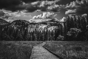 Yosemite National Park, California2016© 2016 Jason Mageau - Image 24361_0333