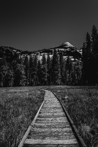 Yosemite National Park, California2016© 2016 Jason Mageau - Image 24361_0334