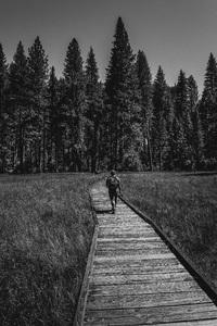 Yosemite National Park, California2016© 2016 Jason Mageau - Image 24361_0335
