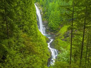Wallace Falls State Park, Washington2013© 2017 Viktor Hancock - Image 24366_0031