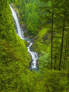 Wallace Falls State Park, Washington2013© 2017 Viktor Hancock - Image 24366_0032