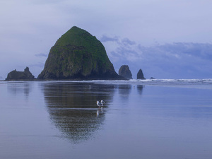 Haystack Rock at Cannon Beach, Oregon2015© 2017 Viktor Hancock - Image 24366_0038