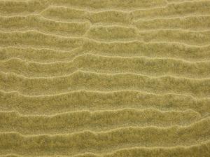 Cannon Beach, Oregon2016© 2017 Viktor Hancock - Image 24366_0045