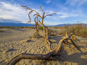 Death Valley, California2017© 2017 Viktor Hancock - Image 24366_0055