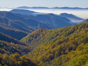 Great Smoky Mountains National Park, Tennessee2016© 2017 Viktor Hancock - Image 24366_0080