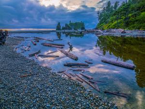 Olympic National Park, Washington2013© 2017 Viktor Hancock - Image 24366_0111
