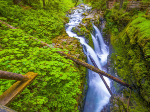 Sol Duc Falls, Olympic National Park, Washington2013© 2017 Viktor Hancock - Image 24366_0112