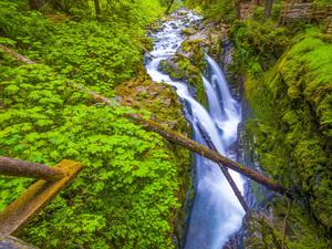 Sol Duc Falls, Olympic National Park, Washington2013© 2017 Viktor Hancock - Image 24366_0112