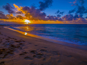Sandy Beach, Oahu, Hawaii2014© 2017 Viktor Hancock - Image 24366_0116