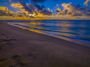 Sandy Beach, Oahu, Hawaii2014© 2017 Viktor Hancock - Image 24366_0117