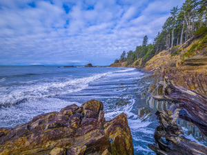 Olympic National Park, Washington2014© 2017 Viktor Hancock - Image 24366_0120