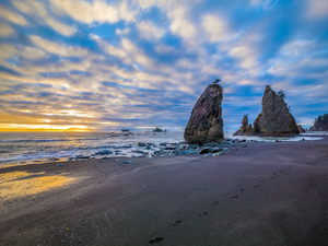 Rialto Beach, Washington2014© 2017 Viktor Hancock - Image 24366_0123