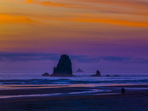 Cannon Beach, Oregon2014© 2017 Viktor Hancock - Image 24366_0128