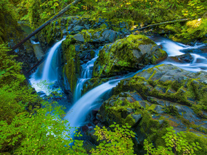 Sol Duc Falls, Olympic National Park, Washington2014© 2017 Viktor Hancock - Image 24366_0129