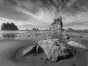 Third Beach, Olympic National Park, Washington2014© 2017 Viktor Hancock - Image 24366_0134