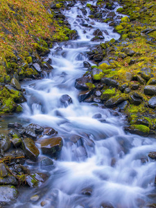 Olympic National Park, Washington2015© 2017 Viktor Hancock - Image 24366_0137
