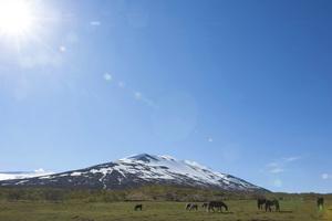 Iceland2015© 2015 Dana Edelson - Image 24367_0041