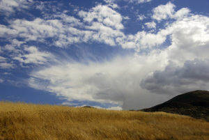 Peru2011© 2011 Dana Edelson - Image 24367_0076