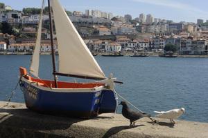 Portugal2016© 2016 Dana Edelson - Image 24367_0097