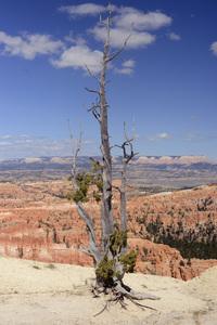 Utah2014© 2014 Dana Edelson - Image 24367_0144