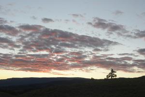 Utah2014© 2014 Dana Edelson - Image 24367_0146