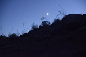 Utah2014© 2014 Dana Edelson - Image 24367_0157