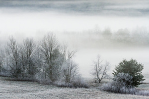Cades Cove, Great Smoky Mountains National Park, Tennessee2015© 2015 Deede Denton - Image 24368_0118