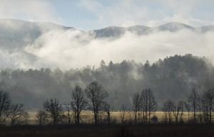 Cades Cove, Great Smoky Mountains National Park, Tennessee2017© 2017 Deede Denton - Image 24368_0170