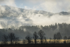 Cades Cove, Great Smoky Mountains National Park, Tennessee2017© 2017 Deede Denton - Image 24368_0171
