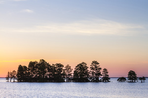 Lake Mattamuskeet, North Carolina2014© 2014 Deede Denton - Image 24368_0177