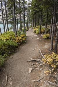 Moraine Lake, Banff National Park, Alberta, Canada2017© 2017 Deede Denton - Image 24368_0368