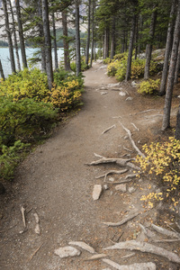 Moraine Lake, Banff National Park, Alberta, Canada2017© 2017 Deede Denton - Image 24368_0369