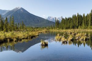Vermilion Lakes, Banff, Alberta, Canada2017© 2017 Deede Denton - Image 24368_0377