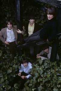 The Leaves (Jim Pons, John Beck, Bill Rinehart, Tom Ray, Robert Lee Reiner)1966© 1978 Gene Trindl - Image 24371_0001