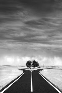 Desert in Transition (Temporary Event - United Arab Emirates)2017© 2017 Anthony Lamb - Image 24375_0055